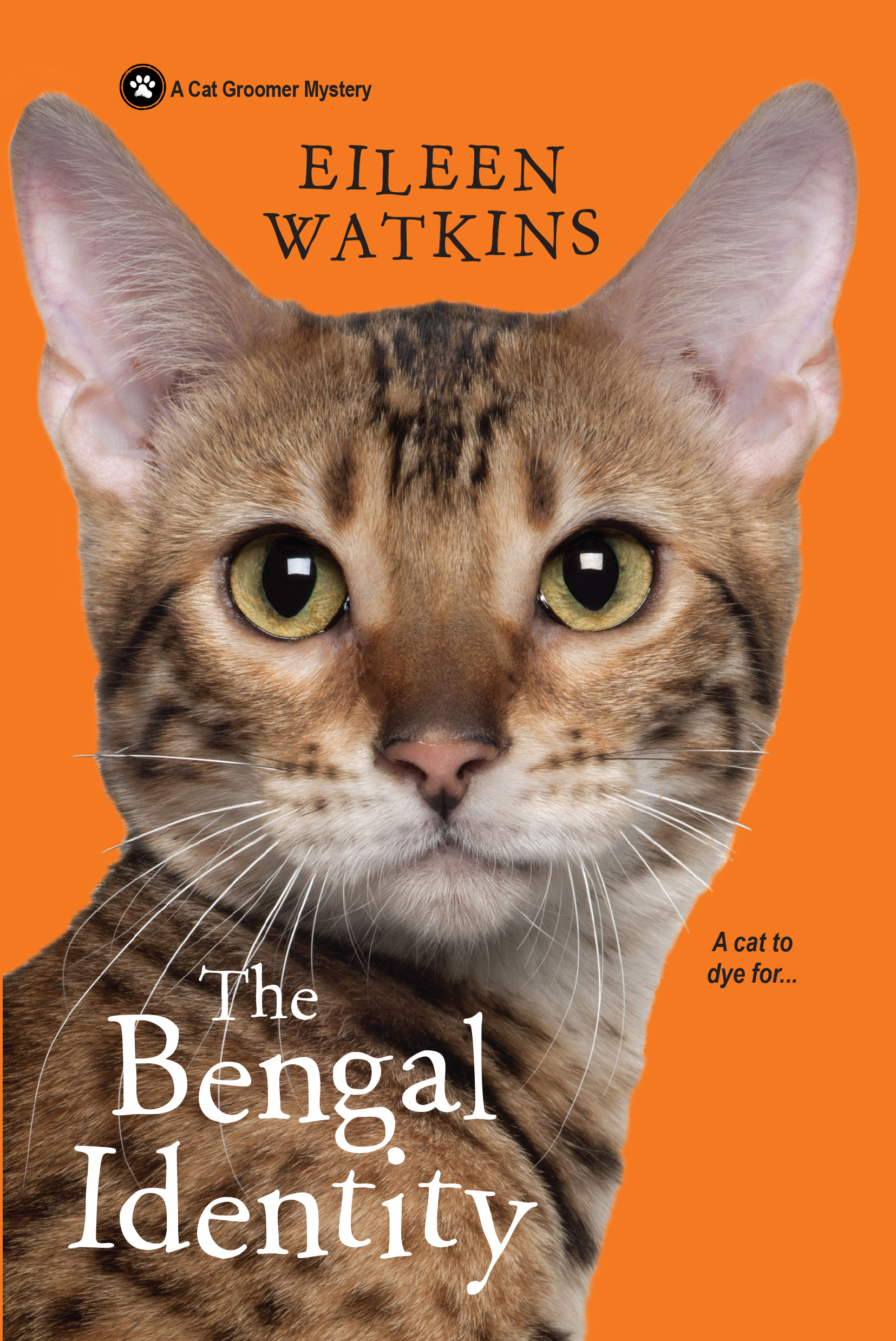 The Bengal identity - bibliophile review